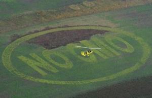 No GMO Field