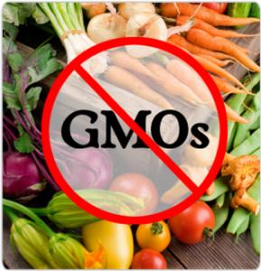 No GMO Veggies