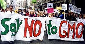 Say No To GMO Rally