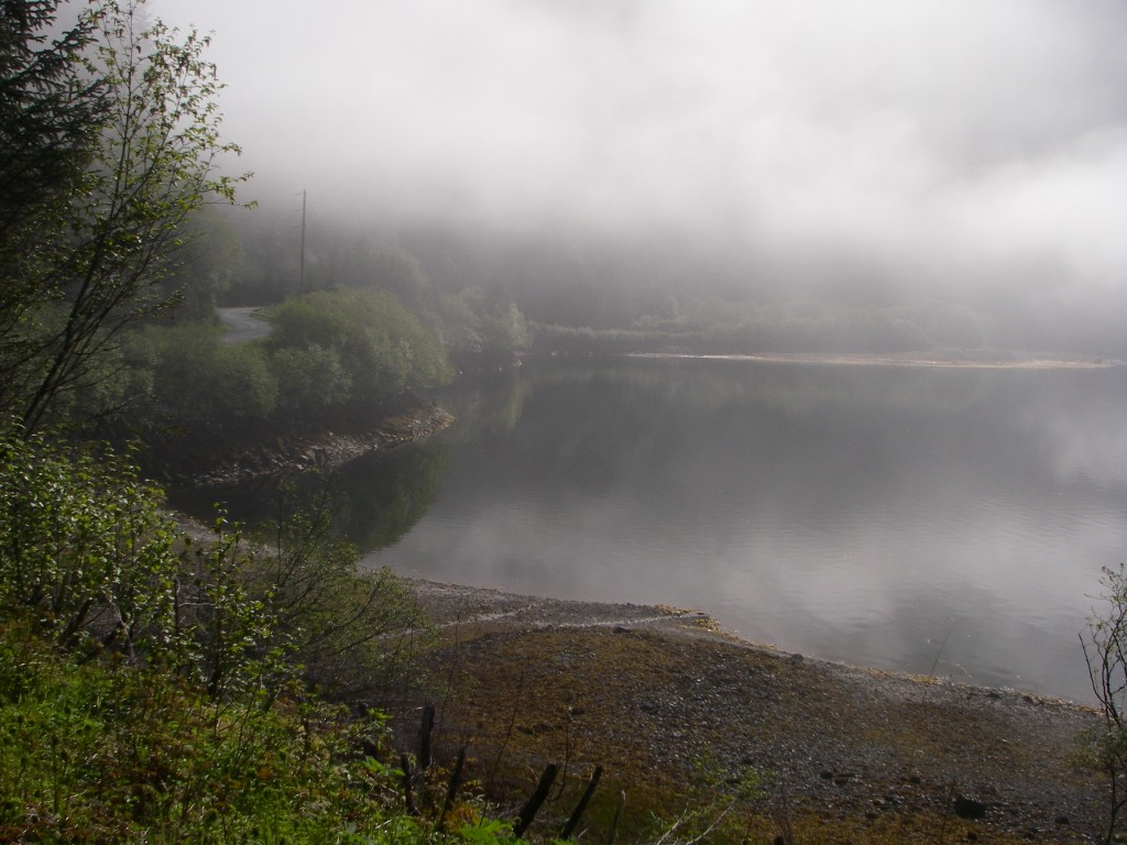 2 Herring Cove Fog